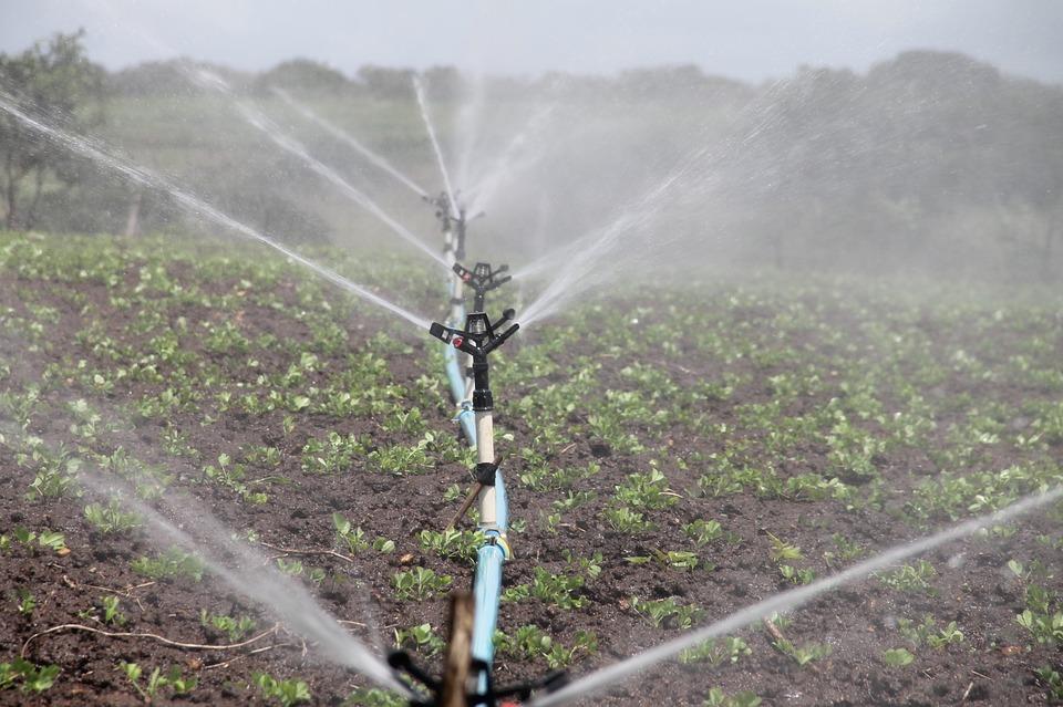 Effective Irrigation System Installation