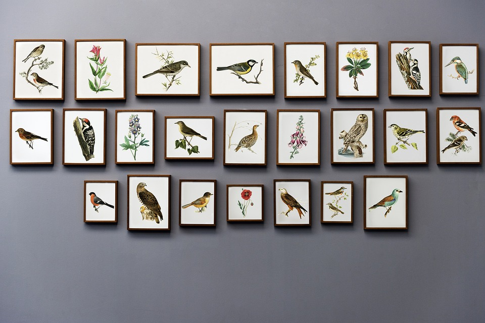 Looking For Wall Decor Online