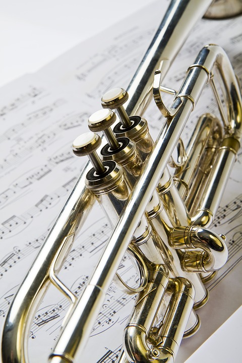 5 Reasons You Should Opt For Online Trumpet Lessons Rather Than In-Person Classes