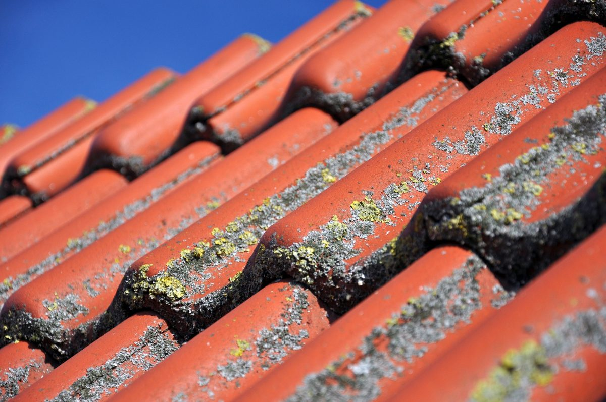 How To Choose The Best Gutter Cleaning Services In Rushden