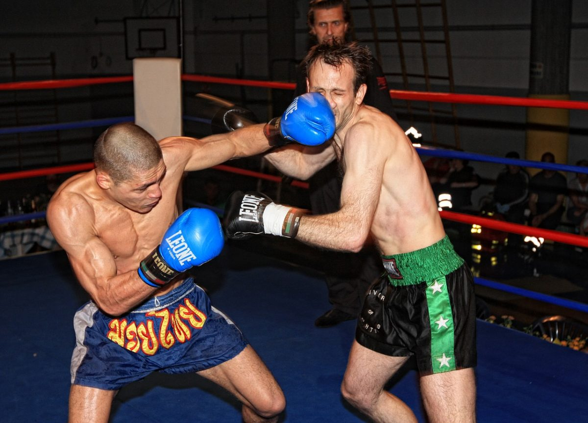 Characteristics Of The Best Combat Sports Articles
