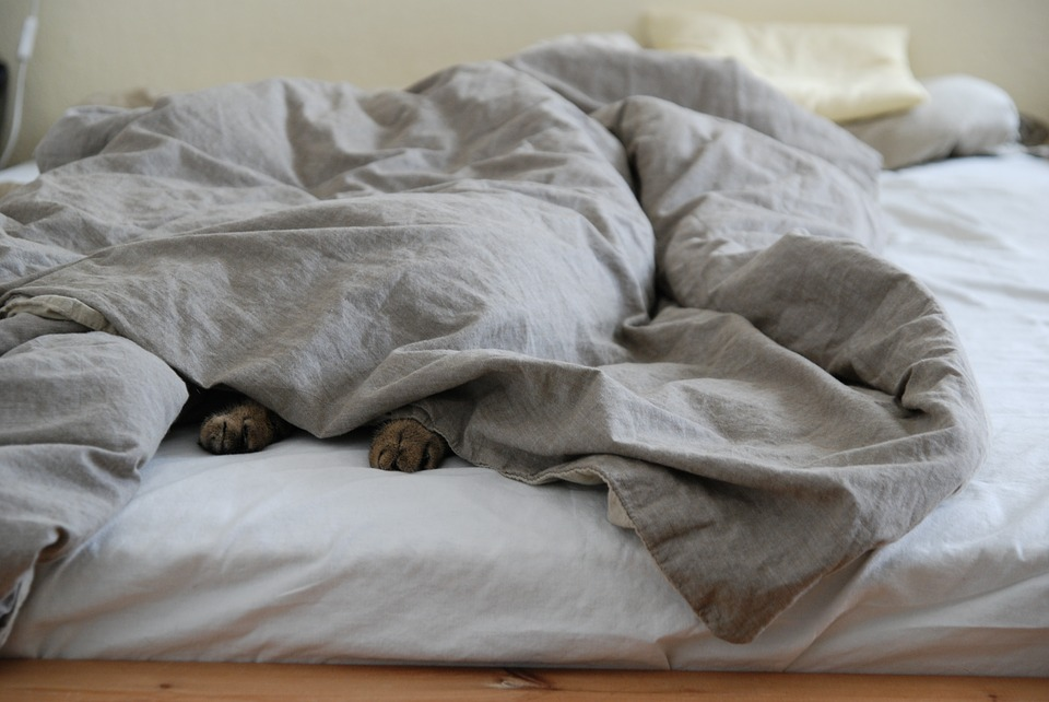 Using A Weighted Blanket For Restless Legs