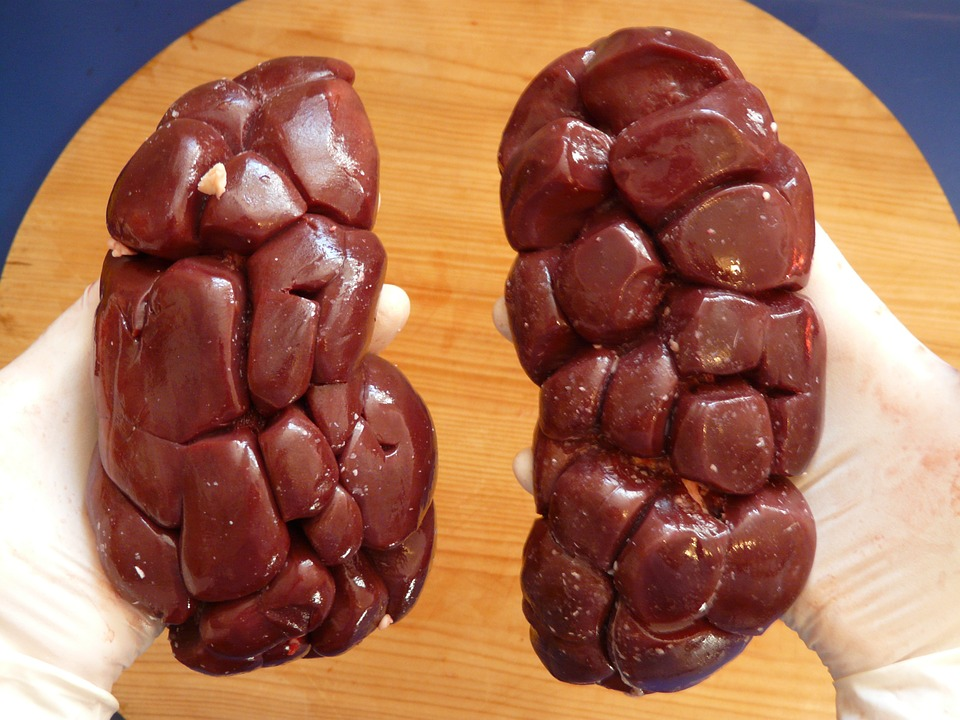 Best Medicine For Kidney Stones – What Can Help You Pass Them Quicker?