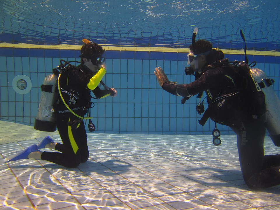 Choose Your Dive Training School Well: Points To Consider