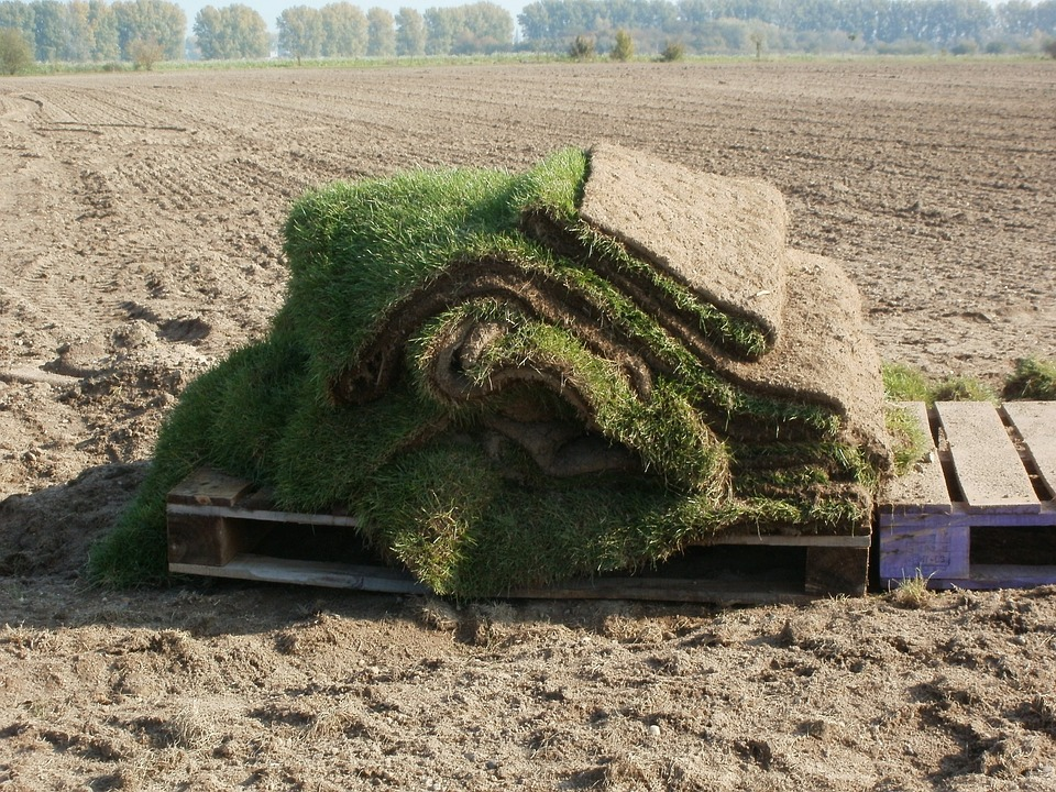 Reliable Sod Installation Calgary