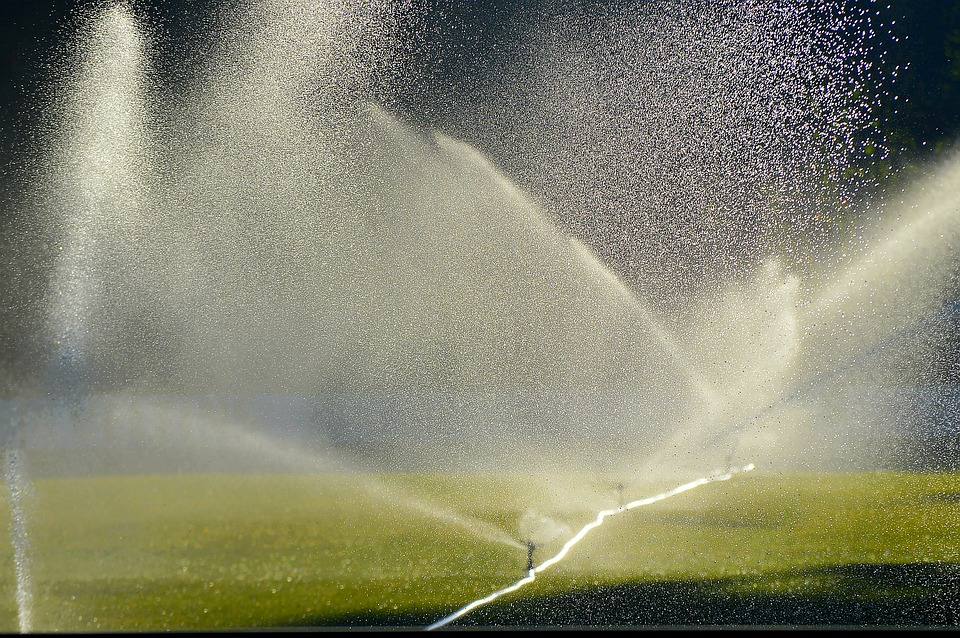 How To Choose The Best Lawn Sprinklers