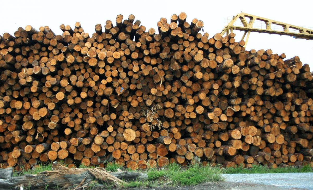 3 Reasons To Use Recycled Lumber