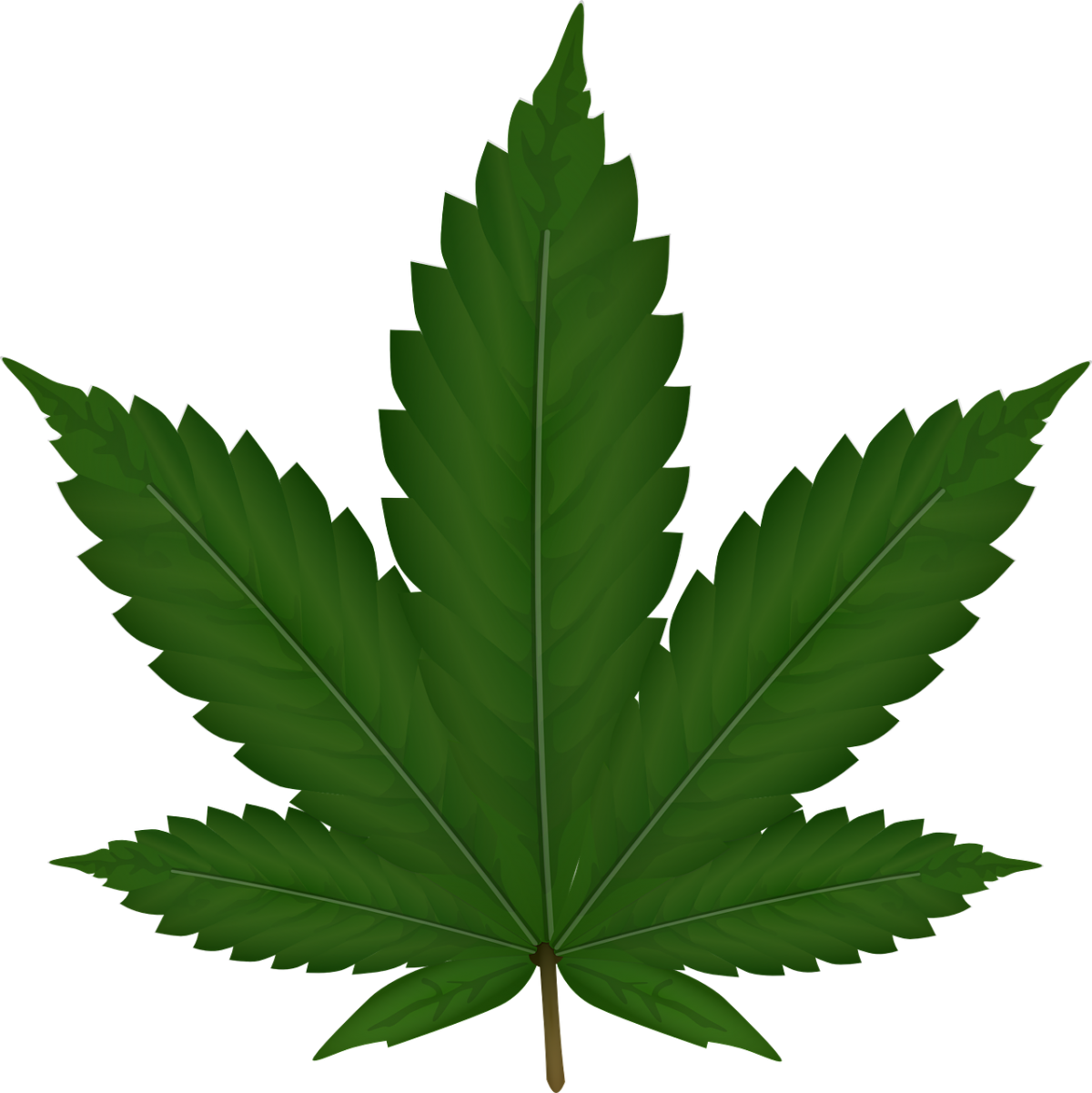 Tips For Buying Quality Weed Products