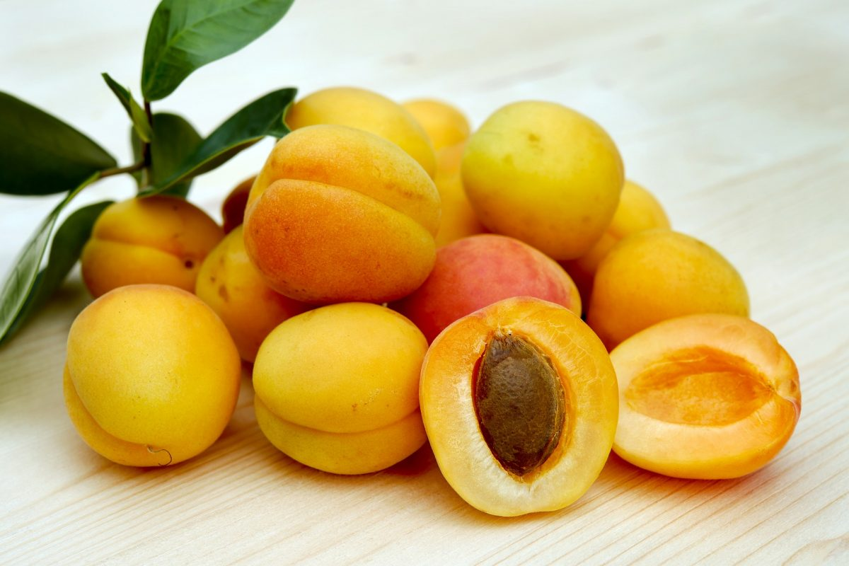 Health Benefits Of Apricot Seeds