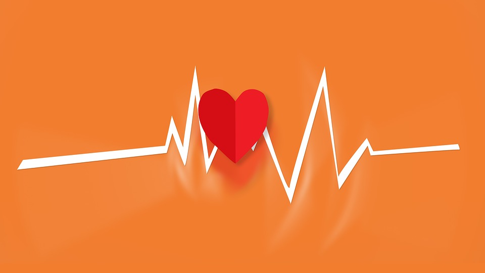 Cardiology Sydney Assists You Through Your Heart Problems