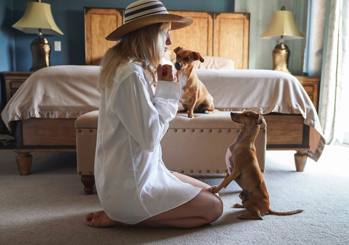 What To Know About In Home Dog Training